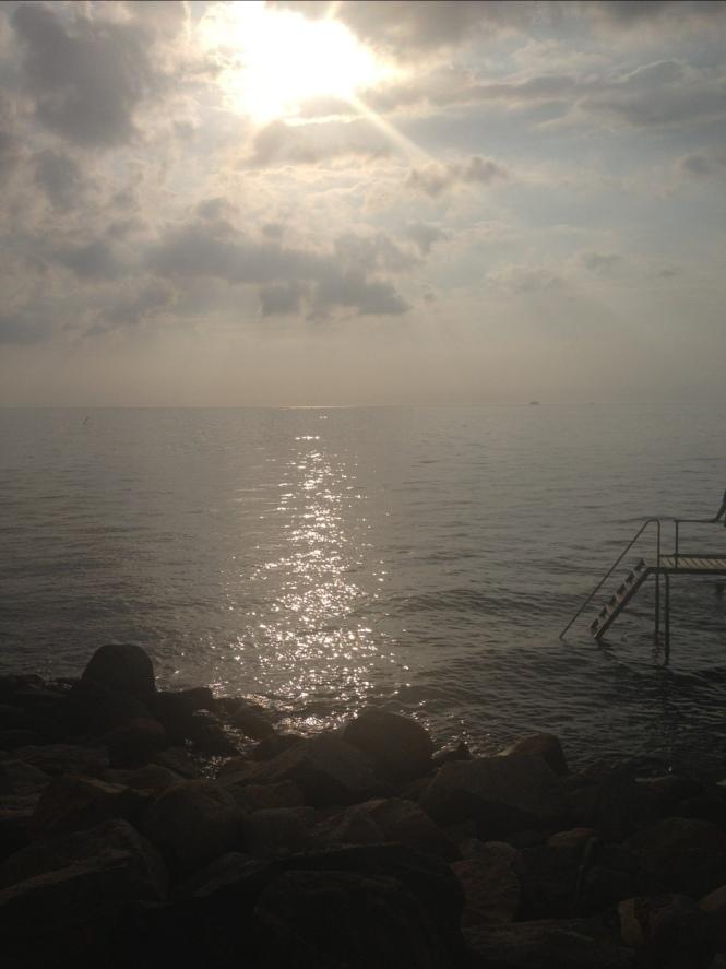 20120701-113134.jpg